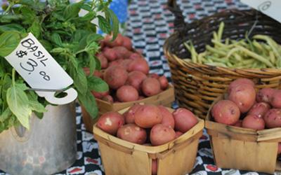 farmers_market_veggies